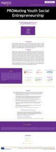 thumbnail of PROMYSE_Newsletter_1_LT