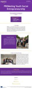 thumbnail of PROMYSE_Newsletter_2_EN
