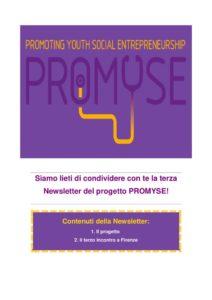 thumbnail of PROMYSE_Newsletter_3_ΙΤ