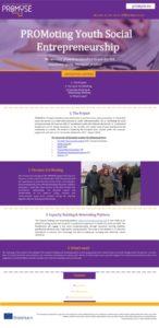 thumbnail of PROMYSE_Newsletter_3_EN
