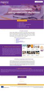 thumbnail of PROMYSE_Newsletter_4_LT